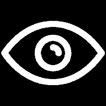 Vision Icon white